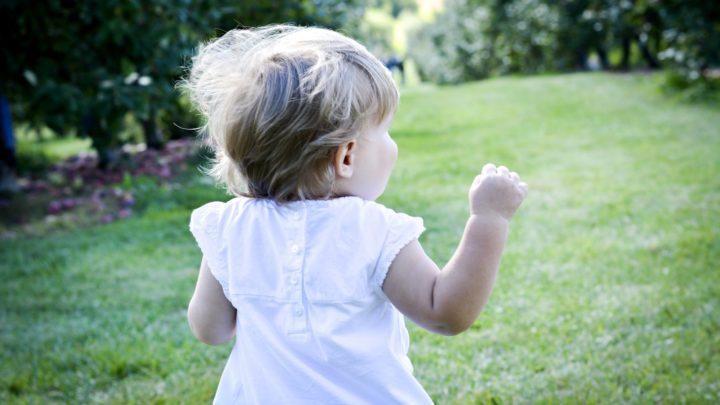 Les enfants éduqués au sein d'espaces verts ont un QI plus élevé