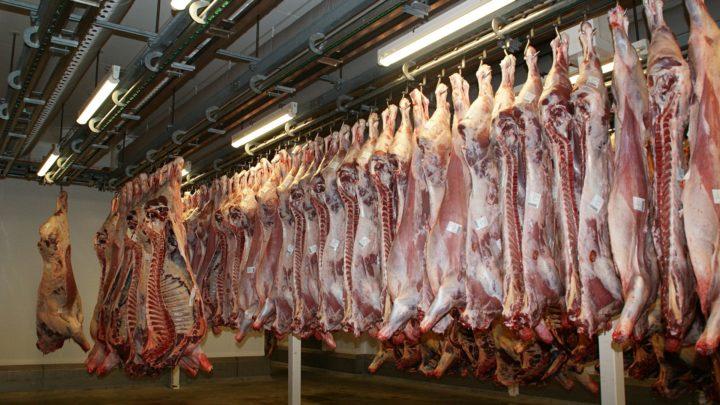 Pandémies : la production massive de viande est néfaste pour les animaux et pour les êtres humains