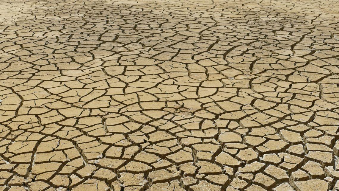 Notre impitoyable recherche du profit n'épargnera pas notre planète